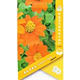 Go Garden Tithonia desl (Orange) 1 Packet 10039; s (Pcs) Mexican Sunflower Tithonia rotundifolia Tithonia Speciosa Garden Plant: 3 Packets