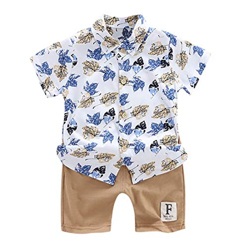 - heavKin-Clothes 1-4Years Children's Kids Baby Boy 4th of July Stars Printed Embroidery Short Sleeve Shirt T-Shirt Tops + Star Stripes Shorts Suit (Brown, 2-3 Years)