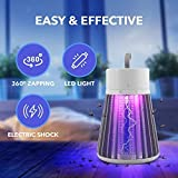 BUZZBGONE Zap - Electric Bug Zapper for Indoors