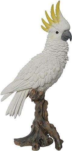 Hi-Line Gift Ltd Cockatoo on Branch Statue