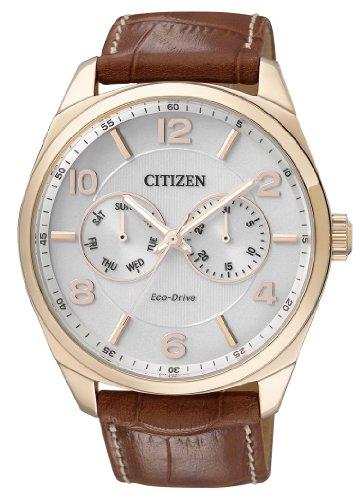 Citizen  0 – Reloj de cuarzo para hombre, con correa de cuero, color marrón