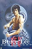 bruce lee quest of the dragon - BRUCE LEE POSTER - ENTER THE DRAGON - KARATE RARE NEW