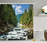 Ambesonne Lake House Decor Collection, Mountain River Along Forest Waterfall Rocks Stream Travel Destination Hiking Sunny Image, Polyester Fabric Bathroom Shower Curtain Set with Hooks, Bue Olive