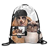 Best School Smart Bags For Teachers - Yishuo Dog With Cat Taking A Selfie Together Review