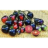 "Glamaours 40 Seeds""Indigo Rose"" Organic Purple Tomato, Not Purple-ish. It's Dark Purple !"