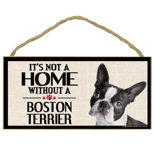 Imagine This Wood Sign for Boston Terrier Dog - Gifts Terrier