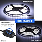 GuoTonG Dimmable LED Light Strip Kit with UL Listed Power Supply, 300 Units SMD 2835 LEDs, 16.4ft/5m 12V DC Non-Waterproof, LED Ribbon, DIY Indoor Kitchen Bar Celebration Decoratio