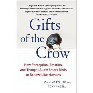 Gifts of the Crow: How Perception, Emotion, and Thought Allow Smart Birds to Behave Like Humans
