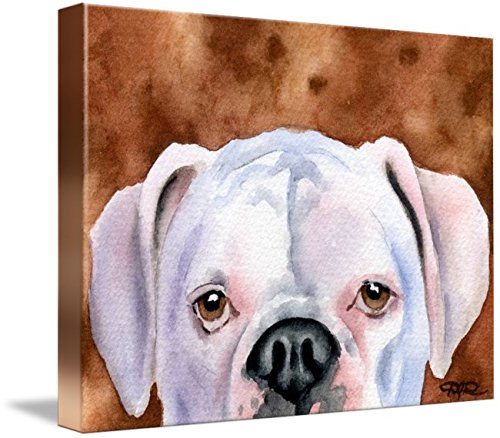 White Boxer Pictures - Imagekind Wall Art Print entitled White Boxer 3 David Rogers | 32 x 24
