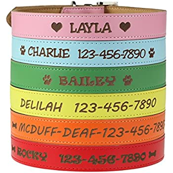 ac8264bab6fb Custom Catch Personalized Dog Collar - Engraved Soft Leather in XS, Small,  Medium or Large Size, ID Collar, No Pet Tags or Embroidered Names