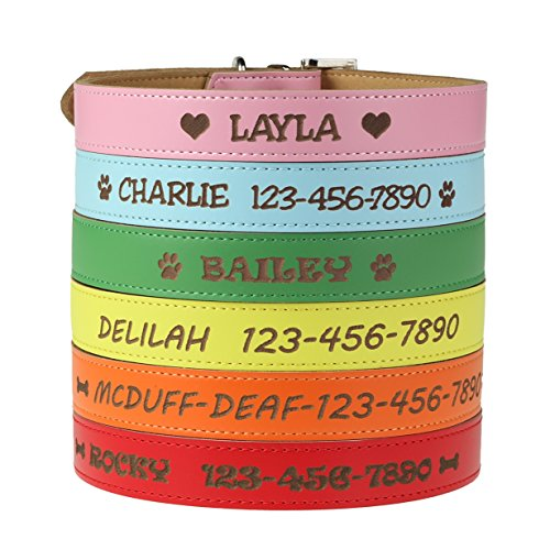 (Custom Catch Personalized Dog Collar - Engraved Soft Leather in XS, Small, Medium or Large Size, ID Collar, No Pet Tags or Embroidered Names)