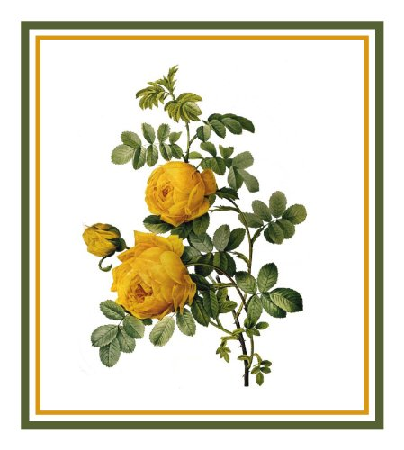Orenco Originals Sulfur Rose Flower by Redoute Counted Cross Stitch Pattern ()