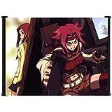 """Code Geass Kallen Anime Fabric Wall Scroll Poster (42""""x31"""") Inches"""