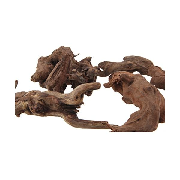 emours Natural Driftwood Branches Reptiles Aquarium Decoration Assorted Size,Small,4 Pieces 2