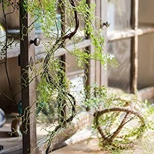 "G Home Collection Rustic Artificial Maidenhair Fern Vines 55"" Long 54"
