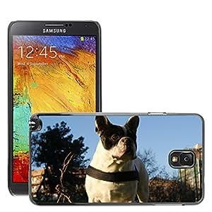 GoGoMobile Etui Housse Coque de Protection Cover Rigide pour // M00124123 Bulldog Dog Pet Collar Pedigree // Samsung Galaxy Note 3 III N9000 N9002 N9005