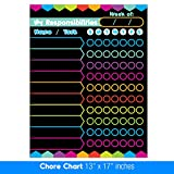 neon chart paper - Best EXTRA LARGE 13 x 17-inch Dry Erase or Wet Erase Laminated Kids Magnetic Chore Responsibility Chart Planner & Organizer - Perfect for Refrigerators Keep Track of Kids Chores, Tasks, To Do's