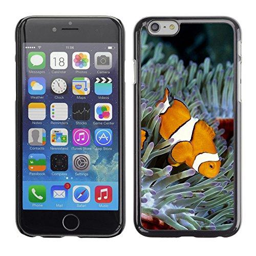 """Premio Sottile Slim Cassa Custodia Case Cover Shell // V00003147 poisson clown // Apple iPhone 6 6S 6G 4.7"""""""