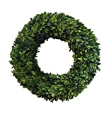 Mills Floral Boxwood Country Manor Round Wreath, 20-Inch