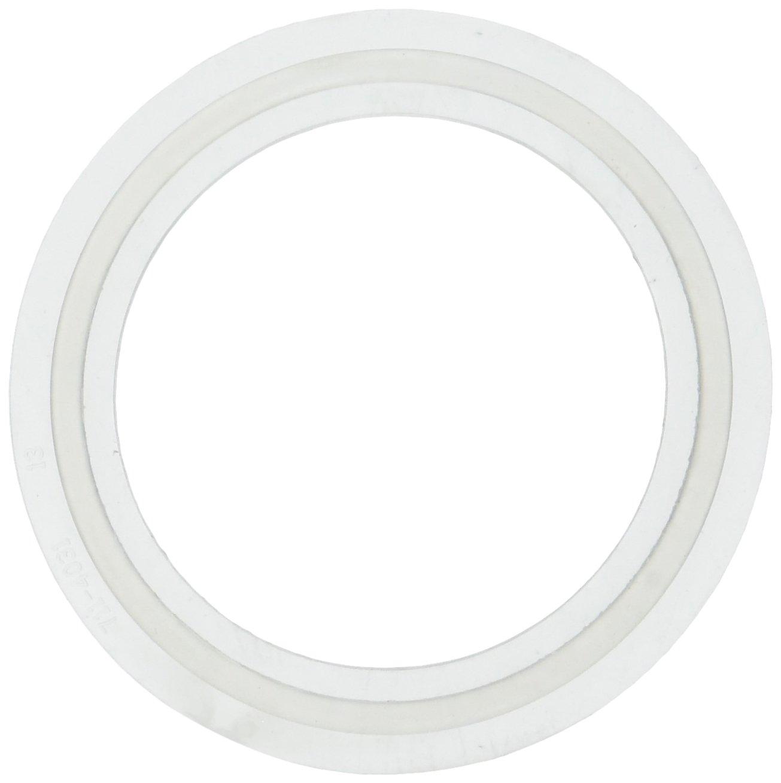 "Waterway Plastics 806105124593 2"" Heater O-Ring/Gasket"
