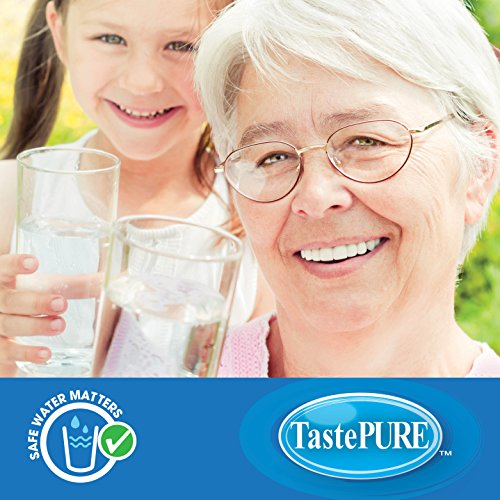 Shopus Camco 40045 Tastepure Inline Rv Water Filter Greatly Reduces Bad Taste Odors Chlorine And Sediment In Drinking Water 2 Pack