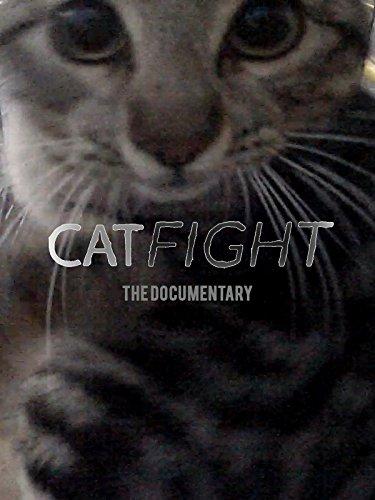 CatFight (Amazon Deals)