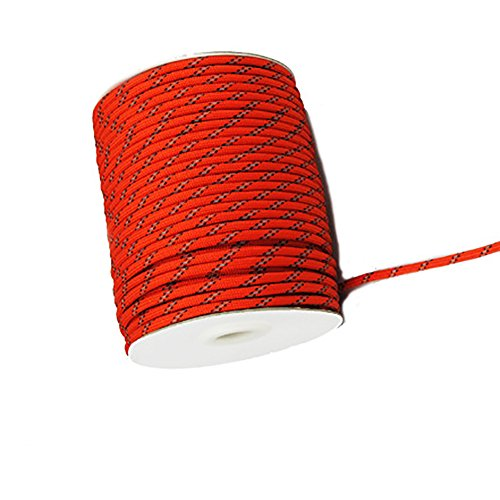 Led Rope Light 50M Roll in US - 8