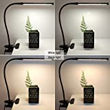 LEPOWER Led Clip on Light / Reading light with Gooseneck 5W Piano Light Color Temperature Changeable Clip Light (Metal)