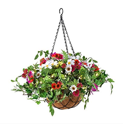 Outdoor Lighted Hanging Baskets - 4