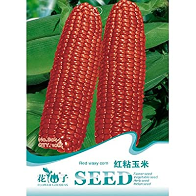 Red Waxy Corn Seeds Novelty Vegetable Seed 10pcs