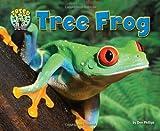 Tree Frog, Dee Phillips, 1617729159