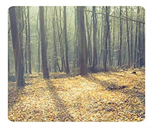 Decorative Mouse Pad Art Print Landscape and Plants Leafless Forest And Sunlight by lolosakes