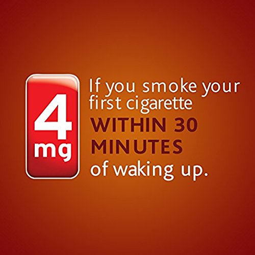 Nicorette Nicotine Gum Cinnamon Surge 4 milligram Stop Smoking Aid 200 count by Nicorette (Image #1)