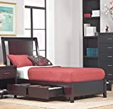 Napier Twin Storage Low Profile Bed in Espresso