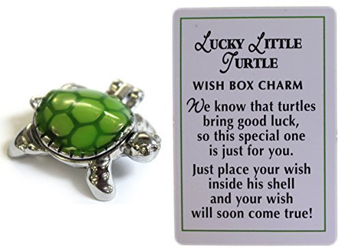 Ganz Lucky Little Turtle Wish Box Charm With Story Card! -