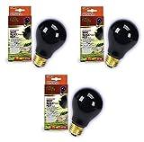 night heat lamp bulb - Zilla Night Black Incandescent Bulb 75 Watt (3 Pack)
