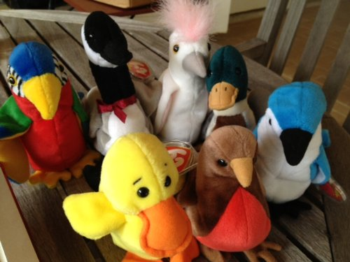Beanie Baby Birds, used for sale  Delivered anywhere in USA