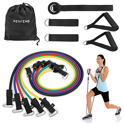 WENFENG Resistance Bands - Set of 5 Exercise Loop Bands for Leg and Glute Activation, Strength, Resistance, and Mobility Training
