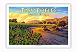 Pacifica Island Art - Paso Robles - Geneseo District - Central Coast AVA Vineyards - California Wine Country Art by Kerne Erickson - Premium 290gsm Giclée Art Print 24in x 36in