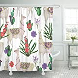 Emvency Shower Curtain Peru Watercolor Painting with Llamas and Cacti Alpaca America Waterproof Polyester Fabric 72 x 72 inches Set with Hooks