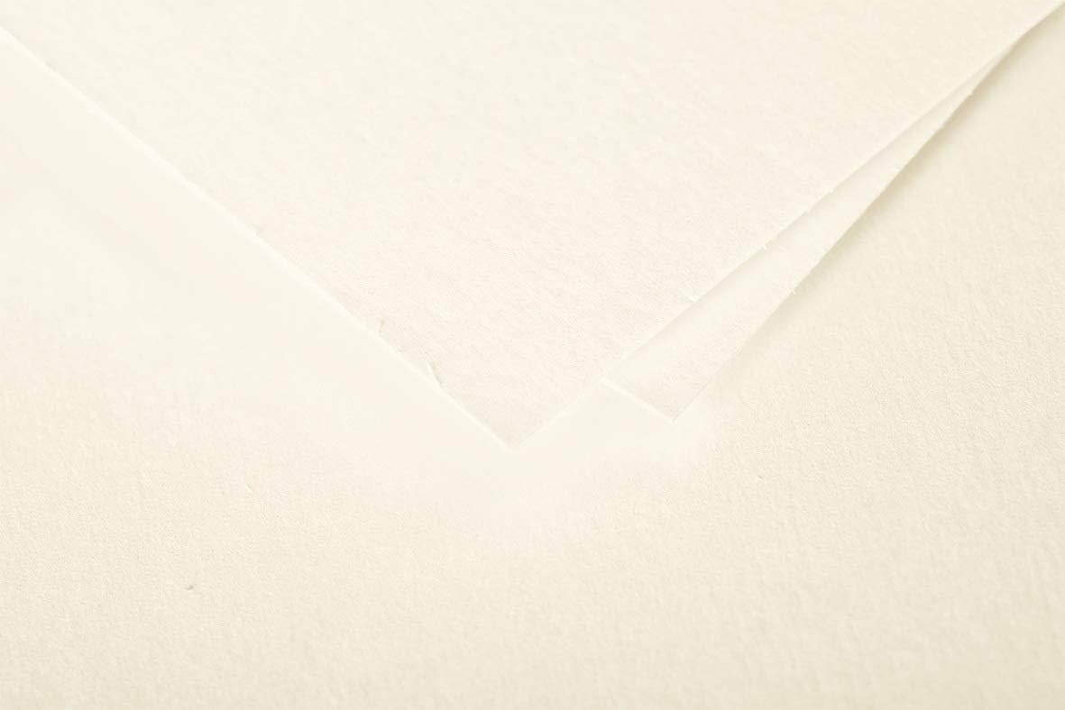 Clairefontaine 5485C Caramel Un paquet de 20 enveloppes Pollen auto-adh/ésives 11x22 cm 120g