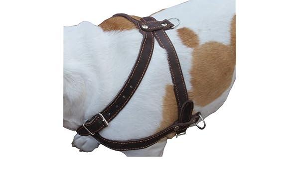 Alta calidad de cuero perro tirar de Walking Arnés. 33