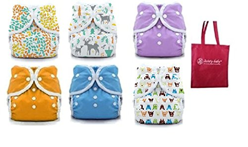 Thirsties Duo Wrap Snaps Size 2 Gender Neutral Colors 6 Pack and Dainty Baby Reusable Bag Bundle by Thirsties