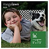 MEGAGRASS MegaLawn Plus 5 x 7.5 Ft Artificial Grass for Pet Lawn and Landscaping Outdoor or Indoor Green Faux Fake Grass Decor Mat Rug Carpet Turf 37.5 SqFt 1.75'' Tall Blades 52 oz Face Weight