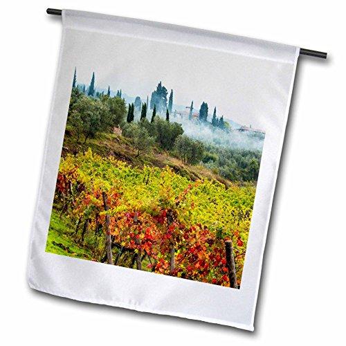 3dRose Danita Delimont - Vineyards - Italy, Tuscany, Chianti, Fog drifts along vineyards in autumn. - 12 x 18 inch Garden Flag (fl_277689_1) (Outdoor Hanging Tuscany)