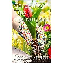 Gardening Tips Hydrangeas