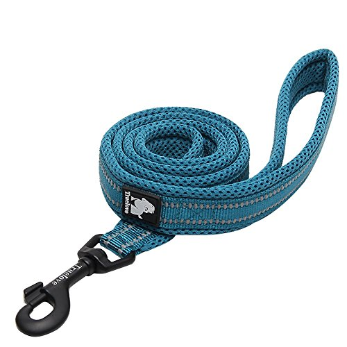"Chai's Choice Best Padded 3M Reflective Outdoor Adventure Dog Leash. (78"" Large, Blue)"