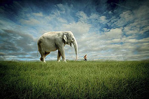 Elephant Follow Me Jeff Madison Novelty Fantasy Animal Child Poster Choose Size, Print or