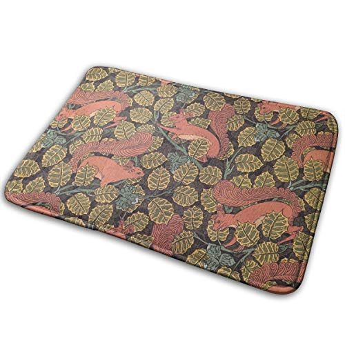 (DENETRI DYERHOWARD Bath Mat Squirrel Leaf Nut Non Slip Bath Rug Washable Bathroom Soft Kitchen Floor Door Mat)