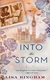 Into the Storm by Lisa Bingham (2015-03-31)
